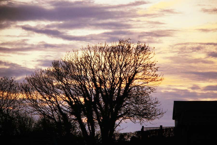 Sunset-At-Webland